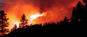incendio-forestal-en-chile