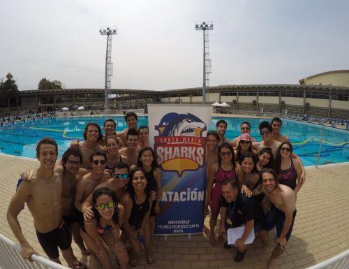 Rama de natación de la USM obtuvo 75 medallas en torneo internacional en Río de Janeiro